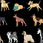 Top 10 Most Popular German Dog Breeds