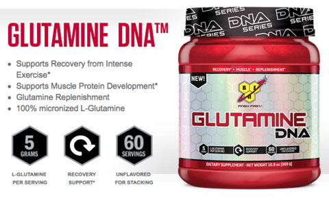 5.BSN Glutamine DNA