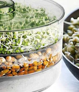 top 5.VR-Plastic-Healthy-Sprout-Maker.jpg