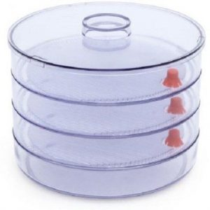 sprouts container amazon